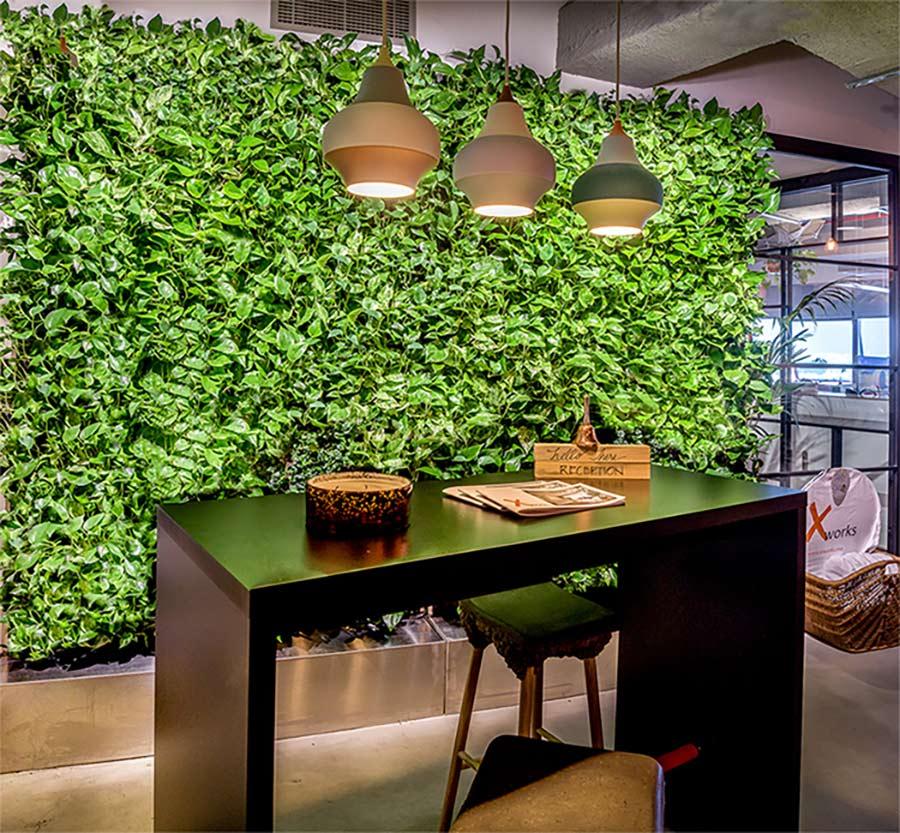 دیوار سبز مدولار - طراحی فضای سبز سروینه